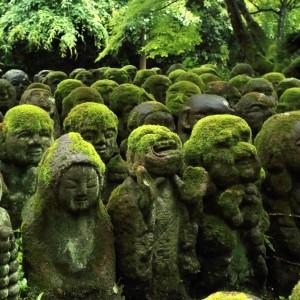 緑・京都に行こう